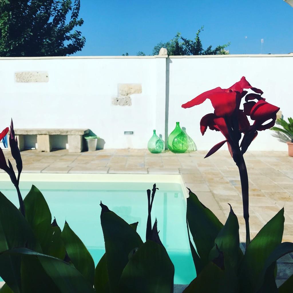 piscina donnalina